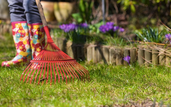 Why Should You Schedule Spring Clean Up As Part Of Commercial Landscaping Direction Ontario